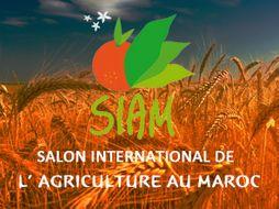 Salon International De Lagriculture Au Maroc Okchem Global B2b