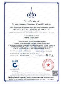 OHSAS18000英文版.jpg