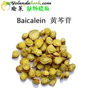 High Pure CAS 21967-41-9 Scutellaria Baicalensis Extract Baikal Skullcap Root Extract Baicalein