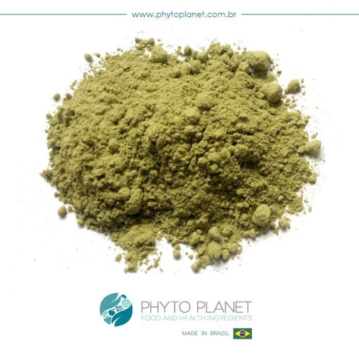 AVOCADO PULP POWDER