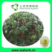 Myricetin,vine tea extract