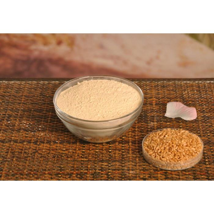 vital wheat gluten 25kg