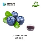 Natural Blueberry extract strong antioxidants Anthocyanin