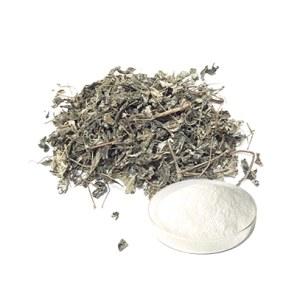 Wholesale Manufacturer Supply Ampelopsis Grossedentata Extract Dihydromyricetin Vine Tea