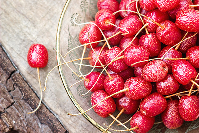 NAC is a powerful antioxidant that can stop cancer cell