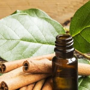 Natural Cinnamon Leaf Oil