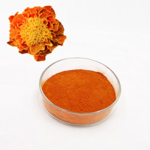 Lutein Extract Powder