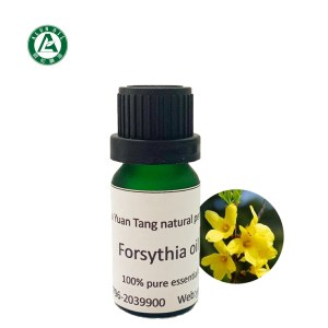 Forsythia Essential Oil