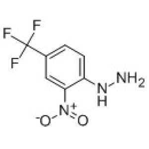 [2-nitro-4-(trifluoroMethyl)phenyl]hydrazine