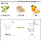 Glucosyl Rutin