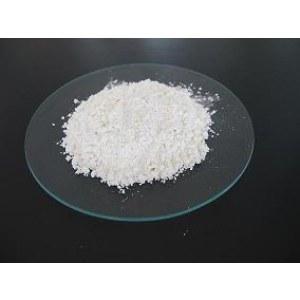 Poly Glutamic Acid (PGA/γ-PGA)