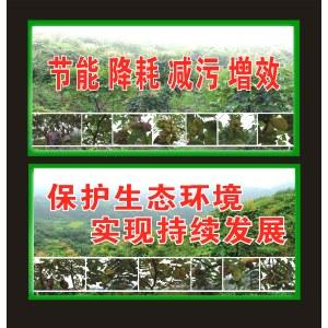 Factory supply high purity 99% gallnut <em>extract</em>/galla chinensis <em>extract</em> gallic acid CAS 149-91-7