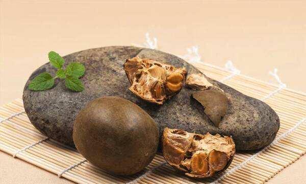 monk fruit extract vs.stevia