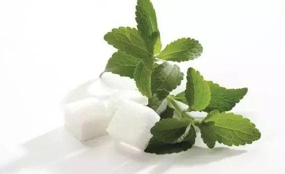 stevia-natural sweeteners