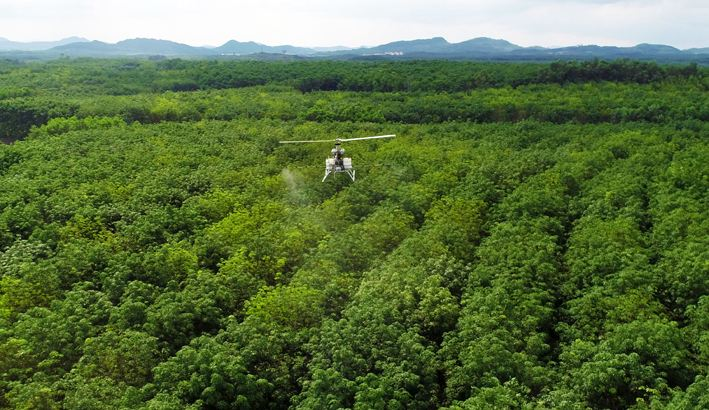 drones to fight fungal disease in rubber tree