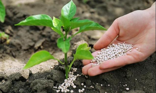 phosphates-based fertilizers