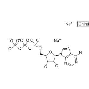 <em>Adenosine</em> <em>5</em>'-triphosphate disodium salt