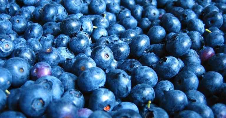 blueberry flavor