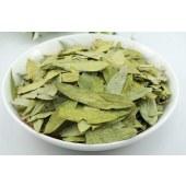 Senna leaf extract sennosides powder