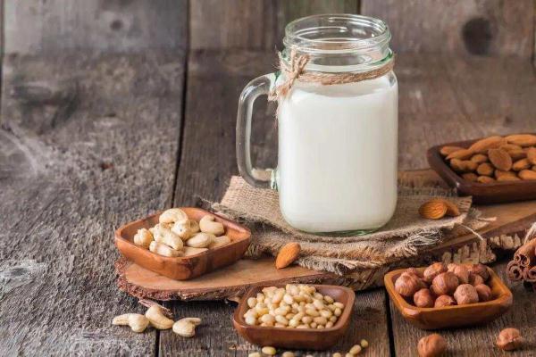 plant-based dairy alternatives