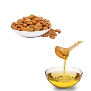 100% pure and natural pine nut oil bulk price