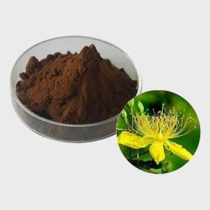 Hypericum Perforatum Extract Powder