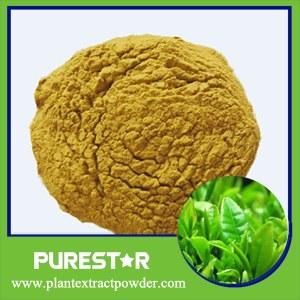 Green Tea Extract(Polyphenol,Catechins,EGCG)