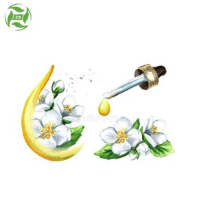 Air Freshening Arometherapy