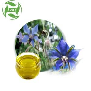Wholesale OEM Skin Care Oil Massage Oil  Borage Oil Essential Oil