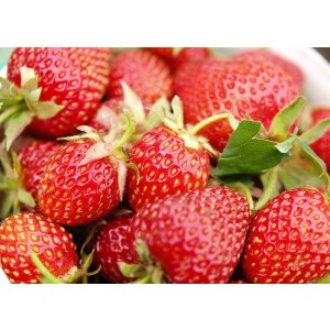 Flavor for food processing, strawberry essence,