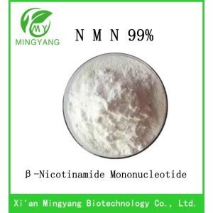 β-Nicotinamide Mononucleotide   NMN 99% manufacturers spot enzyme method NMN CAS 1094-61-7