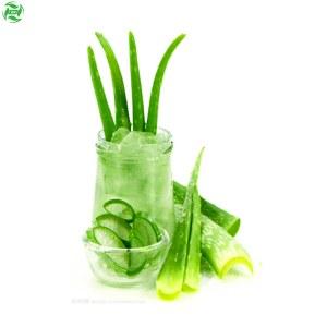 Wholesale Aloe Vera Gel Facial Skincare Raw Material