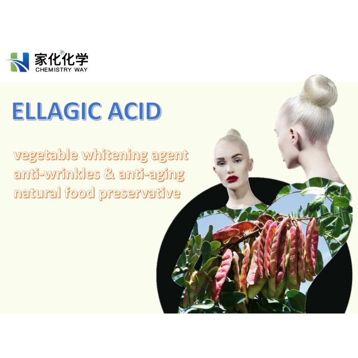 Ellagic acid, whitening, lightening, antioxidant, anti dark spot, anti-aging, vegetable tannin