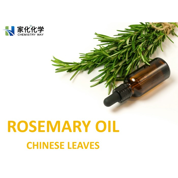Rosemary oil, rosemary leaf oil, rosemary essential oil, Chinese leaves, aromatherapy, slimming oil, refreshing oil, enhance memory