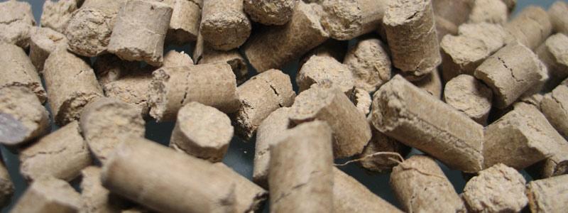 Bioabono a base de desechos de jitomate y chile